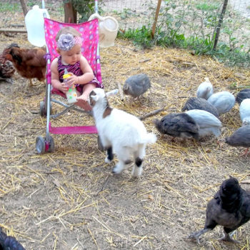 Jessie Mae and animal friends