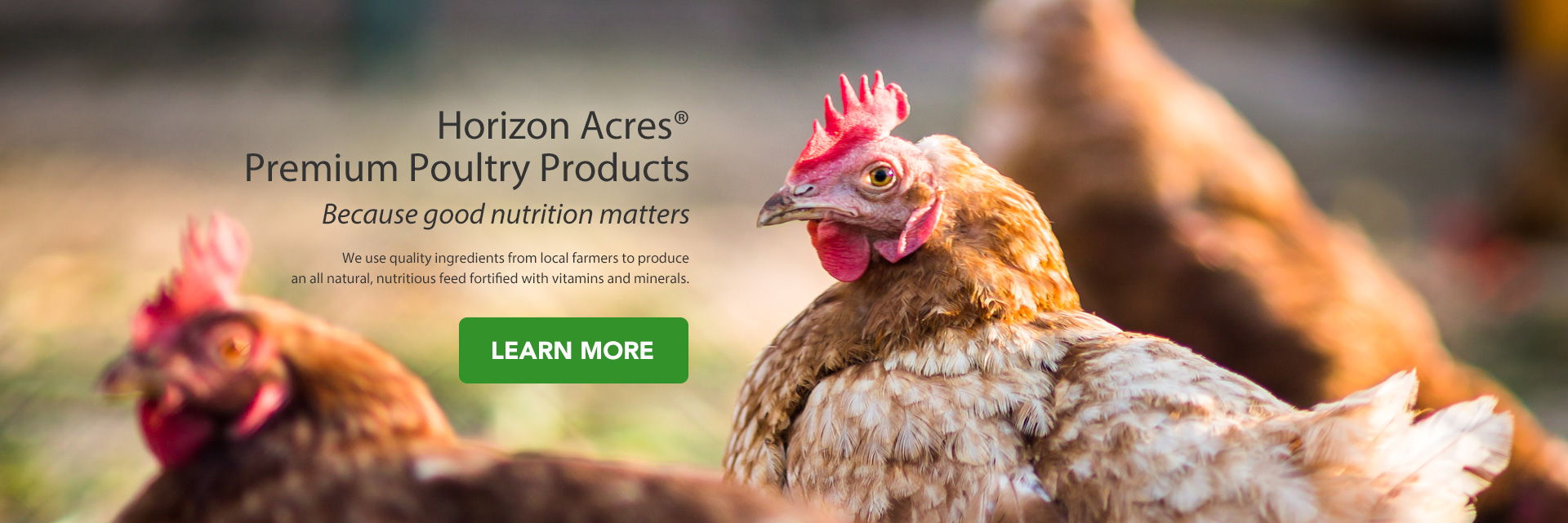 Horizon Acres Premium Poultry Products